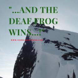 deaf dog wins